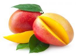 Mango Conservas Perú Exportación Junio 2016