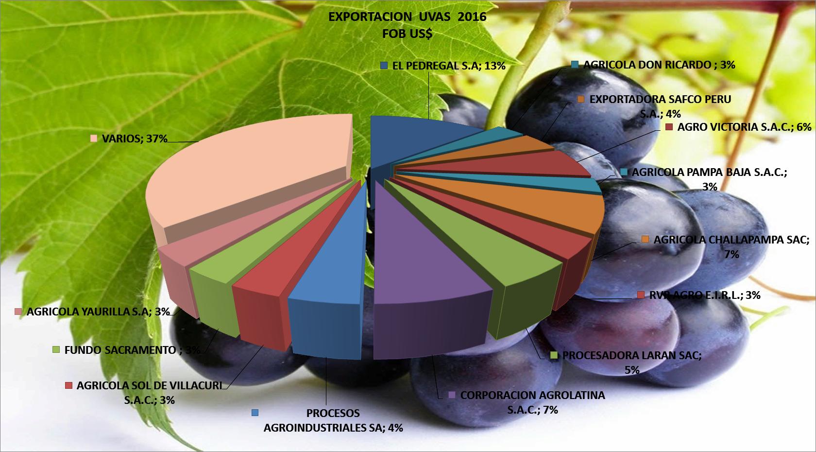 Uvas Frescas Perú Exportación 2016 Septiembre