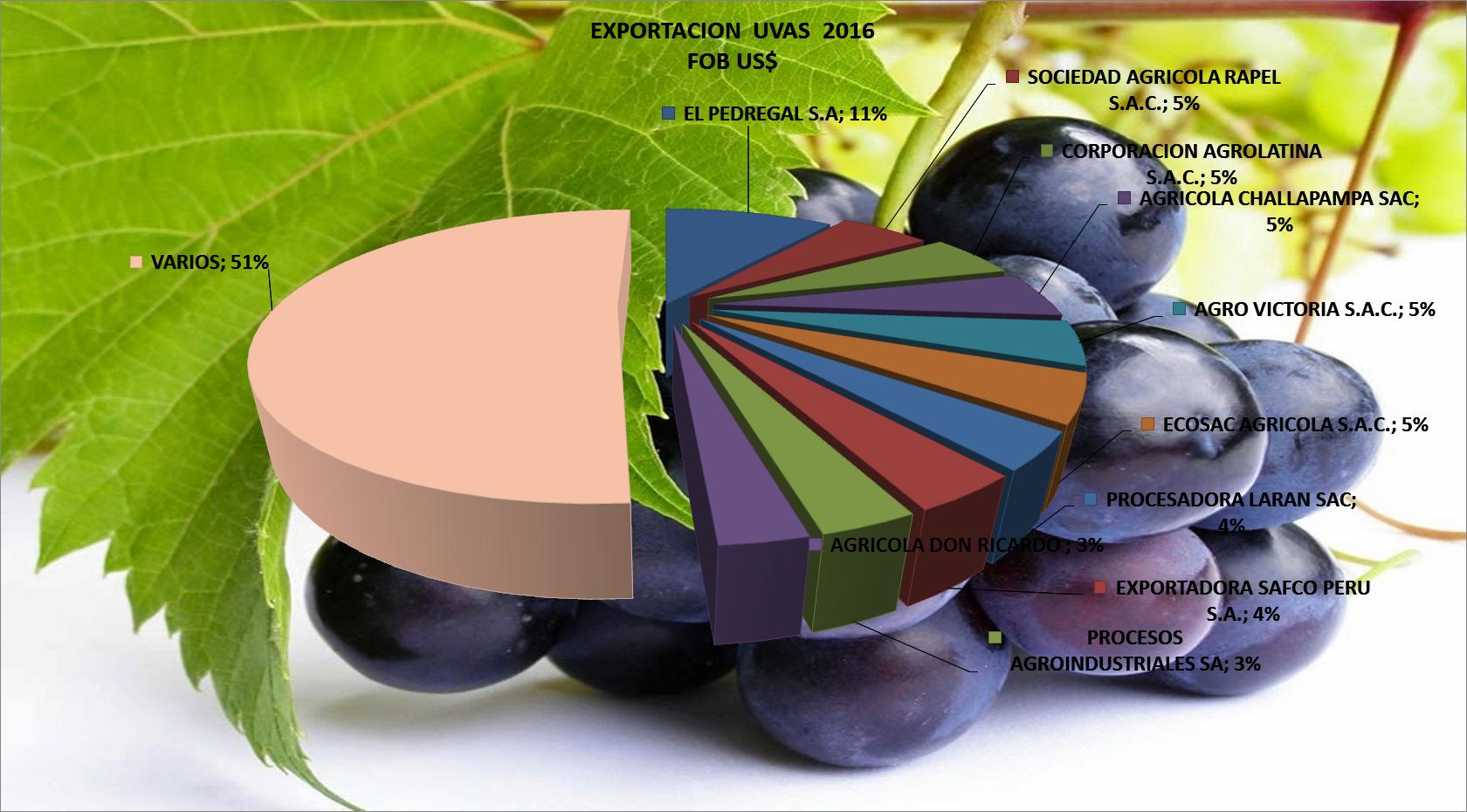 Uvas Perú Exportación 2016 Octubre