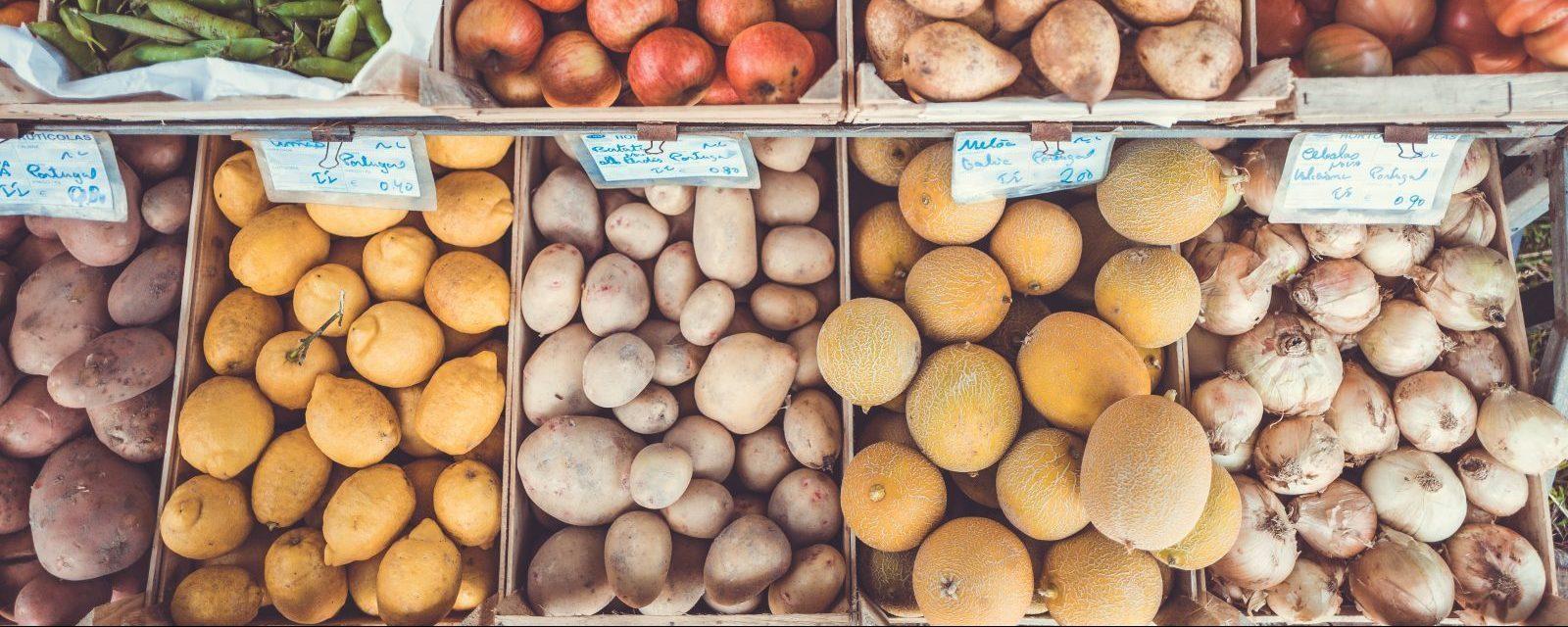 ¿Deseas comprar o vender productos agropecuarios?