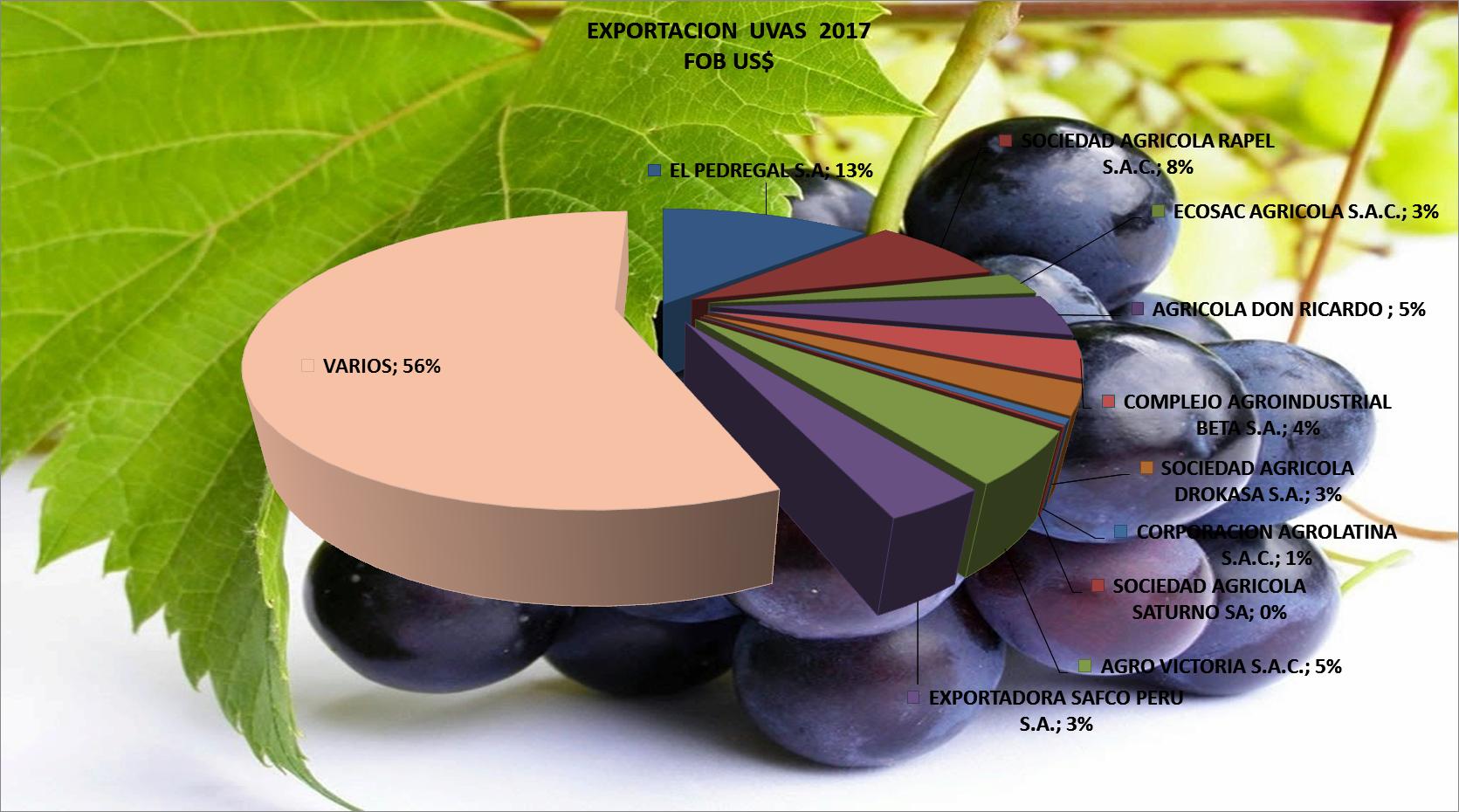 Uvas Perú Exportación 2017 Enero
